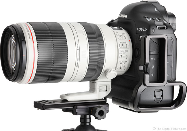 Canon EF 100-400mm L IS II mounted on an EOS 1D
