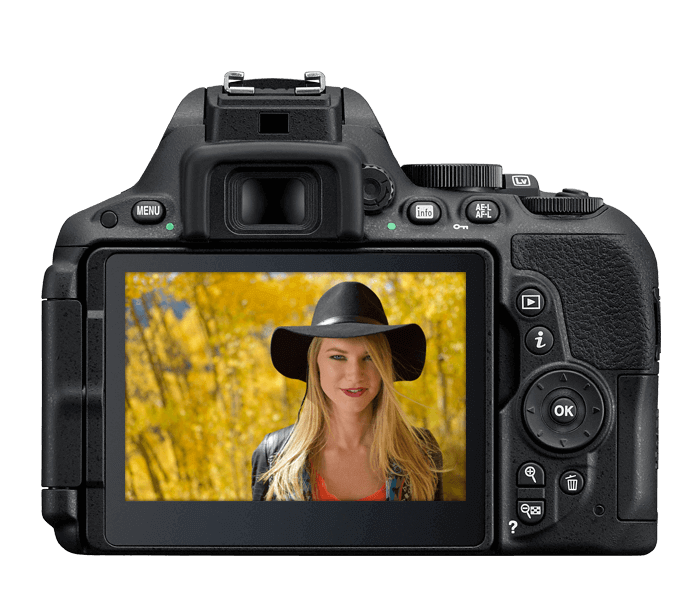Nikon D5500 display
