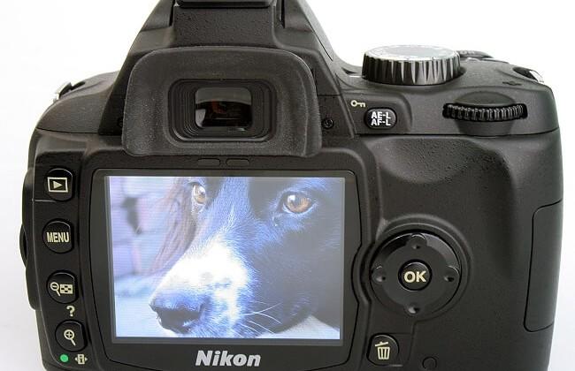Nikon D60 LCD