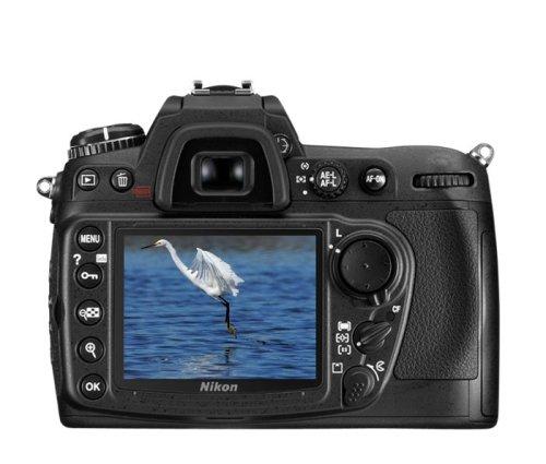 Nikon D300 display
