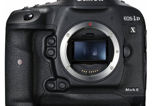 Canon 1DX body only